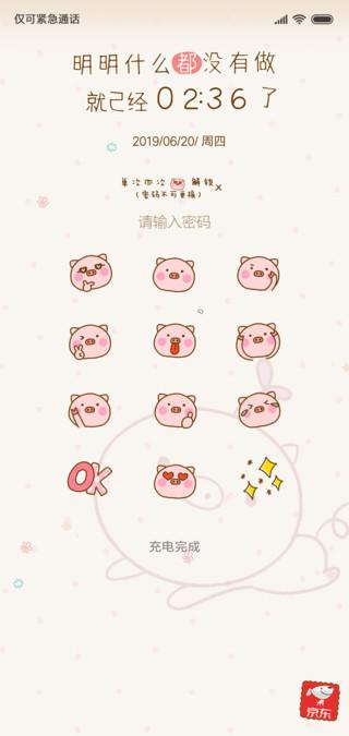 乖巧可爱猪猪